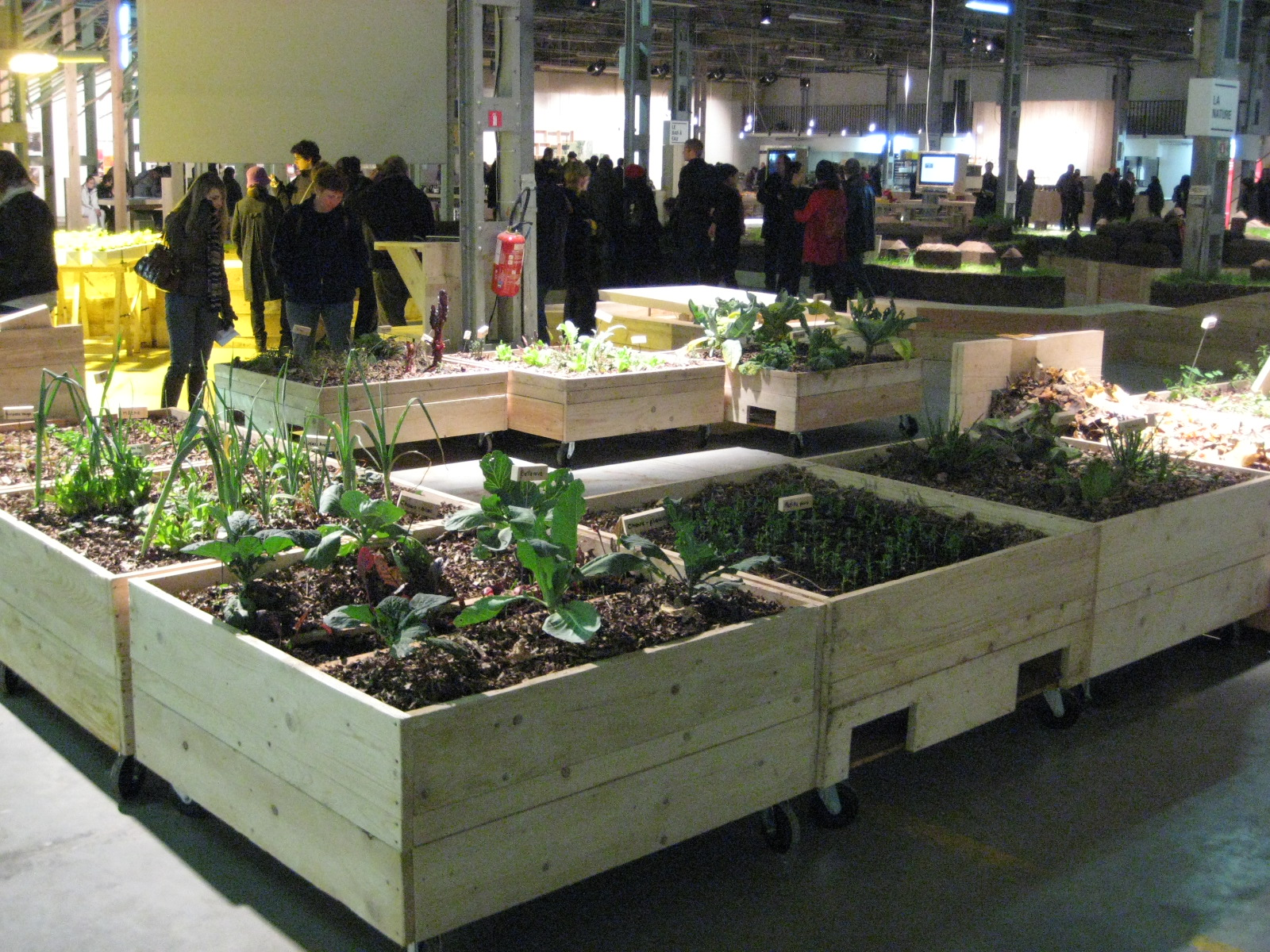 urban-permaculture.JPG