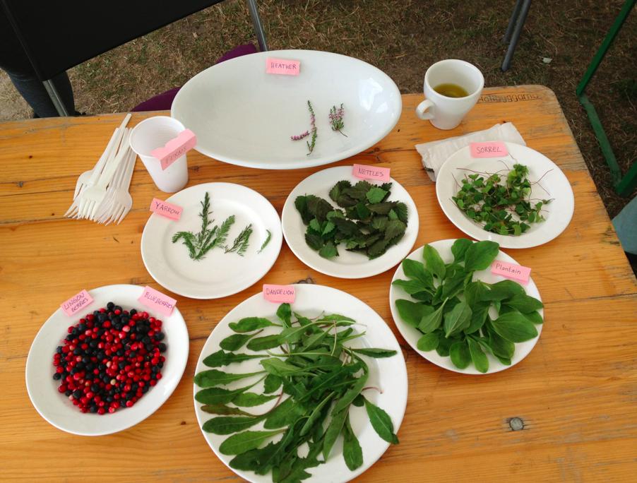aa XSKL FP herbs on plates