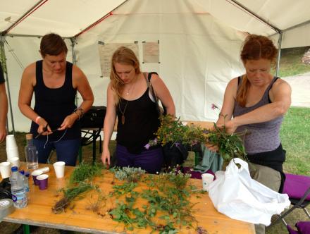 aa XSKL herbs 3 women
