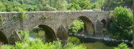 zz-bridge